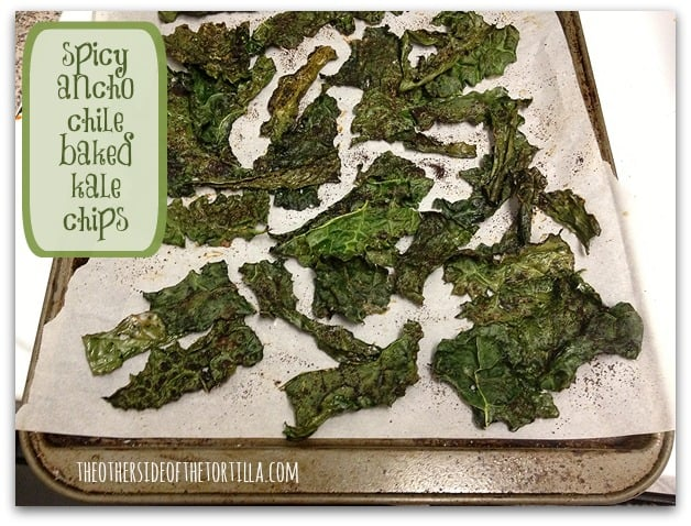 baked_kale_chips_ancho_chile_spicy_TOSOTT