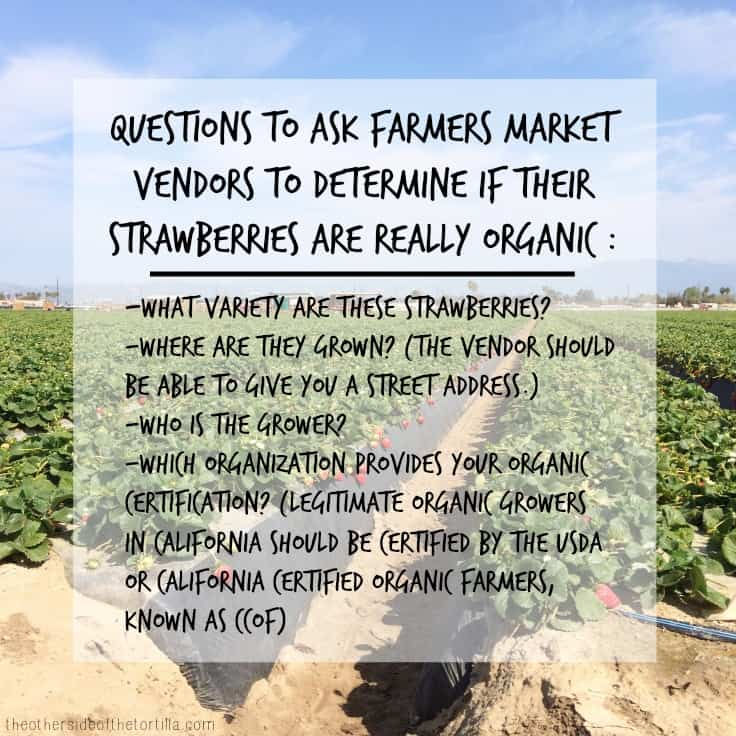 Questions to ask farmers market vendors to determine if the strawberries you're buying are organic