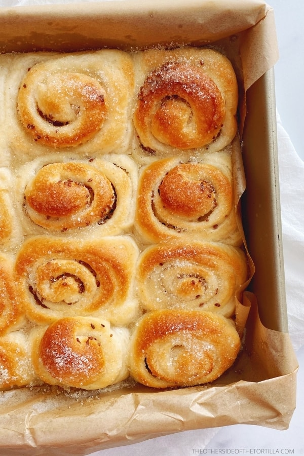 Mexican anise rolls in a square baking pan, topped with sugar