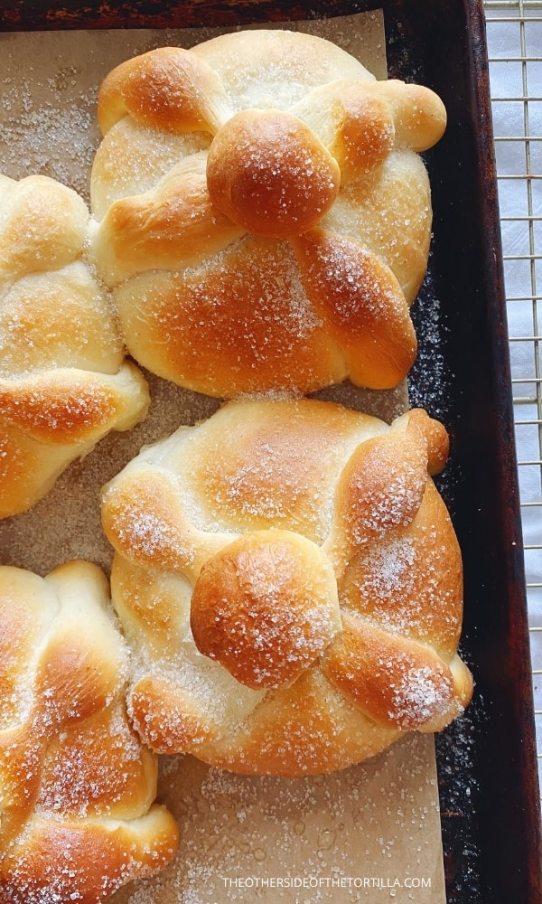 close up view of Mexican pan dulce fresh from the oven and dusted with sugar